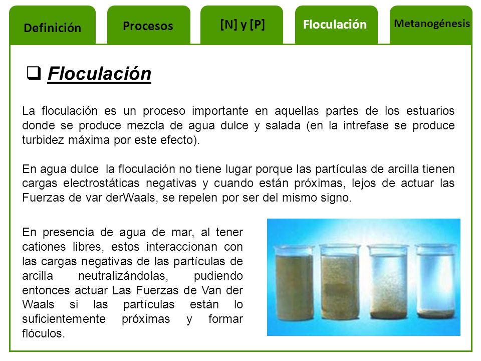 Floculación Procesos [N] y [P] Floculación Definición Metanogénesis